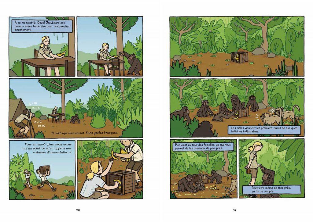 sur-les-traces-des-grands-singes-illustration-lesenfantsalapage