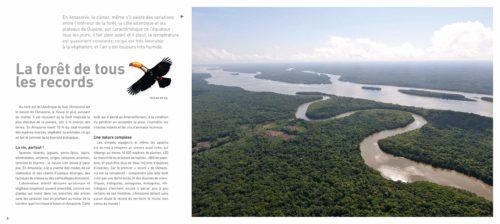 L'Amazonie racontée aux enfants-illustr