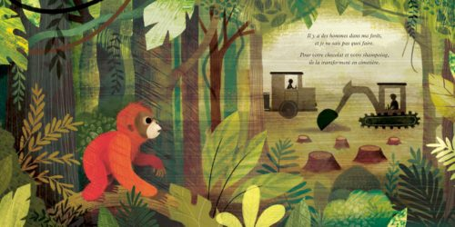Il y a un orang-outan dans ma chambre-illustration