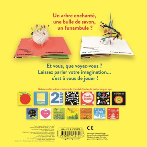 Imaginons Carter Gallimard